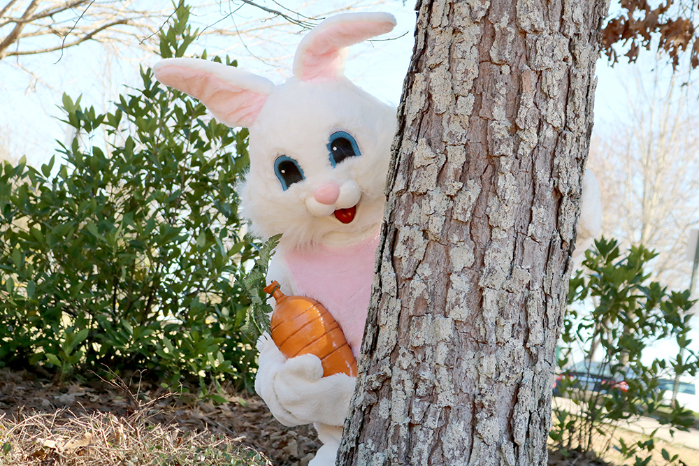 Get ready for an EGGciting Easter Bunny Hunt March 20, 27
